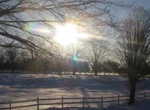snowday-300x225