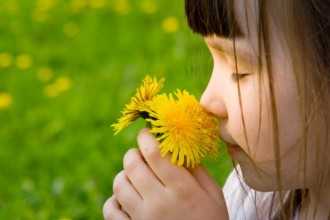 child-smelling-flower from http://cdn1.medicalnewstoday.com/content/images/articles/296/296123/child-smelling-flower.jpg